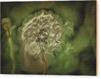 One Woman's Wish Wood Print by Trish Tritz