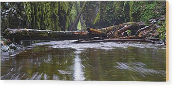 Wood Print featuring the photograph Oneonta Pano by Jonathan Davison