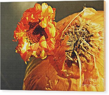 Onion And His Daisy Wood Print by Sarah Loft