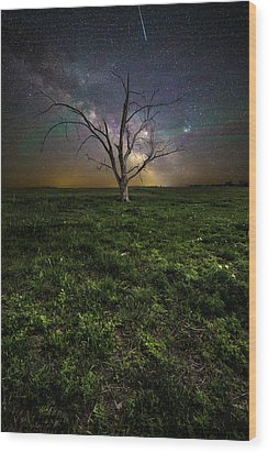 Wood Print featuring the photograph Only by Aaron J Groen