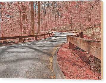 Opalescent Forest Road Wood Print