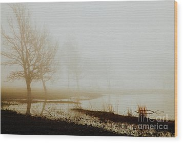 Wood Print featuring the photograph Open Space by Iris Greenwell