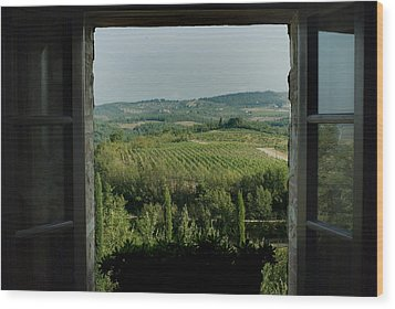 Open Window Looking Out On The Tuscan Wood Print by Todd Gipstein