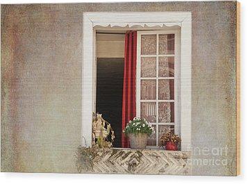 Open Window Wood Print