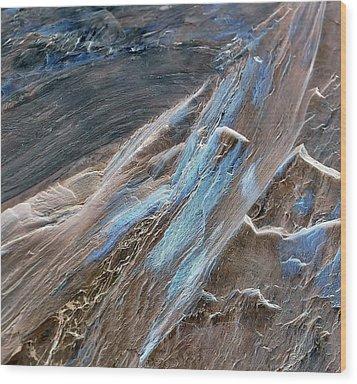 Frayed Wood Print