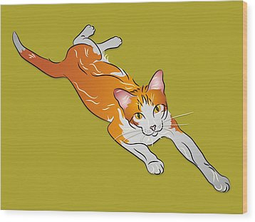 Orange And White Tabby Cat Wood Print by MM Anderson