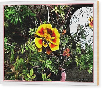 Wood Print featuring the photograph Orange And Yellow Flower by Joan  Minchak