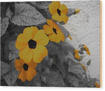 Orange Black Eyed Susan Wood Print by Flower Bomb