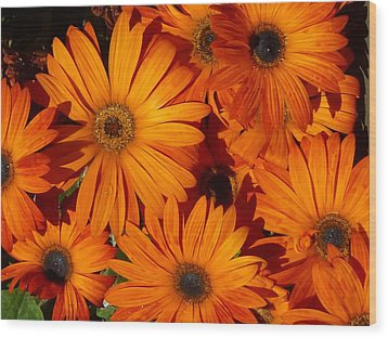 Orange Burst Wood Print