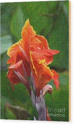 Orange Canna Art Wood Print by John W Smith III
