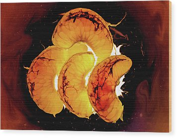 Orange Choc Wood Print