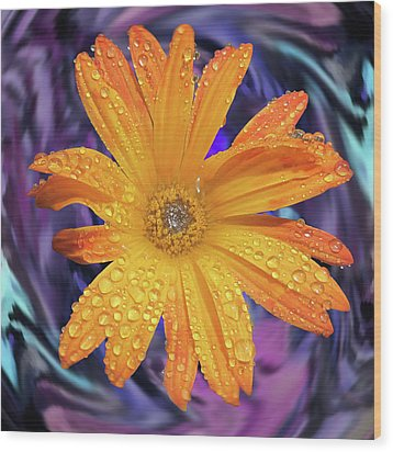 Orange Daisy Swirl Wood Print