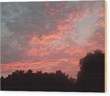 Orange Florida Sunset Wood Print by Warren Thompson
