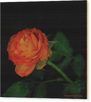 Orange Flower Wood Print by Chaza Abou El Khair