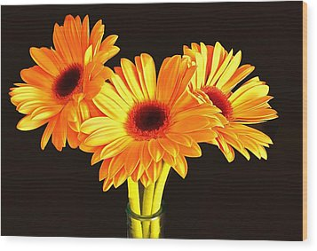 Orange Gerbera's Wood Print
