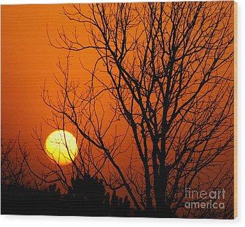 Orange Glow Wood Print by Lynn Reid