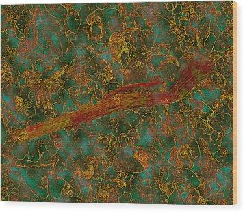 Orange-green Flotsam Wood Print by Dan McCarthy