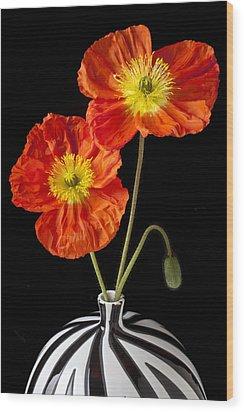 Orange Iceland Poppies Wood Print by Garry Gay