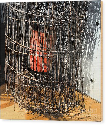 Orange In Wire Wood Print by Gary Everson