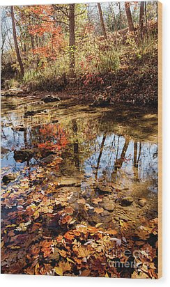 Wood Print featuring the photograph Orange Leaves by Iris Greenwell