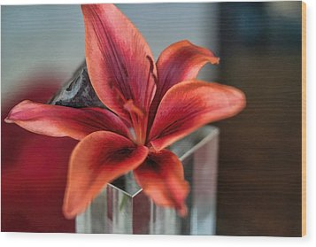 Wood Print featuring the photograph Orange Lilly And Her Companion Abstract by Diana Mary Sharpton
