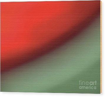 Orange Red Green Wood Print by CML Brown
