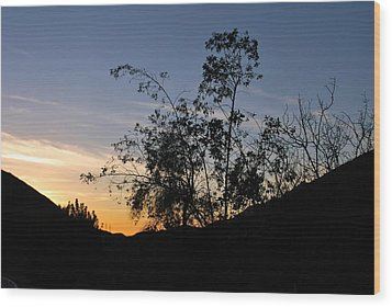 Wood Print featuring the photograph Orange Sky Nature Silhouette by Matt Harang