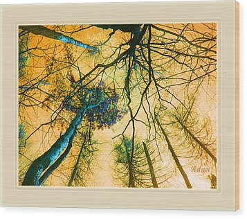 Wood Print featuring the photograph Orange Sky Tree Tops by Felipe Adan Lerma