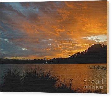 Orange Sunset Glow Wood Print by Kaye Menner