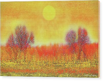 Wood Print featuring the digital art Orange Sunset Shimmer - Field In Boulder County Colorado by Joel Bruce Wallach