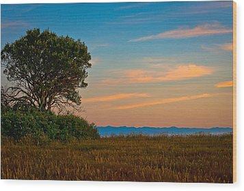 Orange Sunset With Tree Wood Print