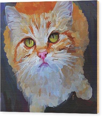 Orange Tabby Cat - Square Wood Print by Jai Johnson