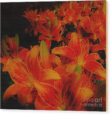 Spicey Tiger Lilies Wood Print