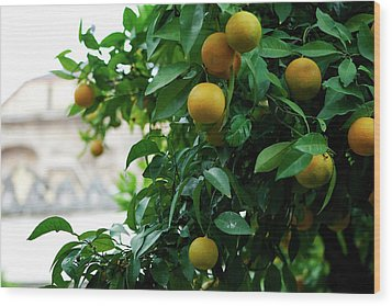Wood Print featuring the photograph Orange Tree by Lorraine Devon Wilke