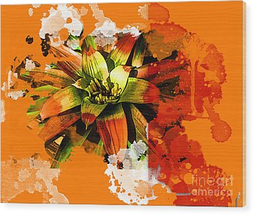 Orange Tropic Wood Print