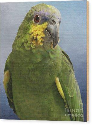 Orange Wing Amazon Parrot Wood Print