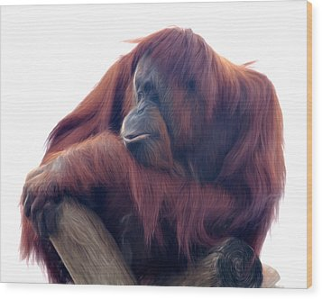 Wood Print featuring the photograph Orangutan - Color Version by Lana Trussell