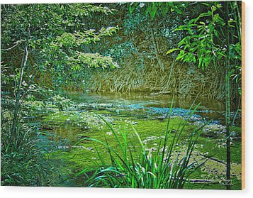 Wood Print featuring the photograph Orara River by Wallaroo Images