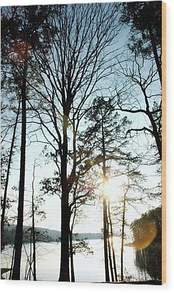 Orbs In The Trees Wood Print