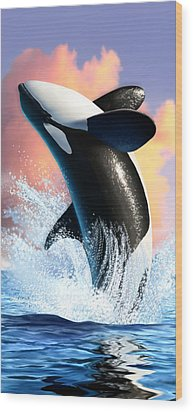 Orca 1 Wood Print by Jerry LoFaro