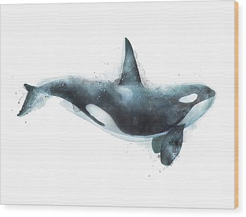 Orca Wood Print by Amy Hamilton