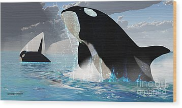 Orca Whales Wood Print by Corey Ford