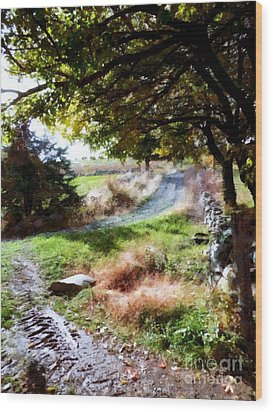 Wood Print featuring the painting Orchard Country Roads by Janine Riley