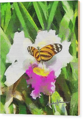 Orchid And Butterfly Wood Print by Anthony Caruso