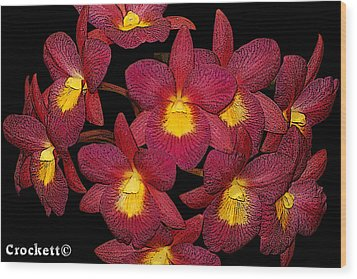 Orchid Floral Arrangement Wood Print by Gary Crockett