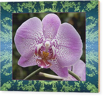 Wood Print featuring the photograph Orchid Goodness by Bell And Todd