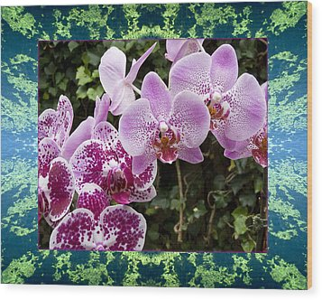 Wood Print featuring the photograph Orchid Kindness by Bell And Todd