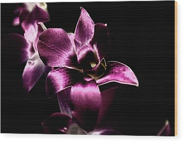 Orchid Wood Print by Sheryl Thomas