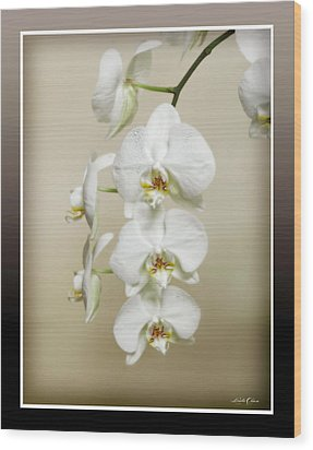 Wood Print featuring the photograph Orchid Spray by Linda Olsen