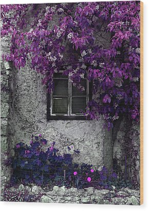Orchid Vines Window And Gray Stone Wood Print